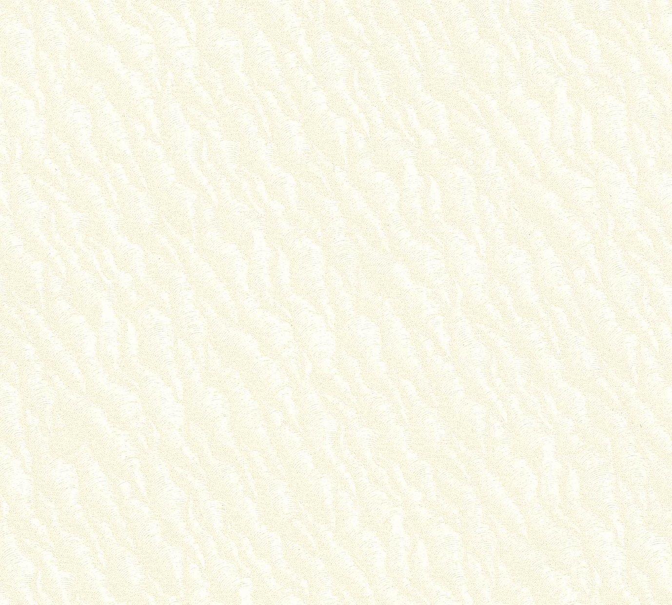 紙見本 スター印小間紙