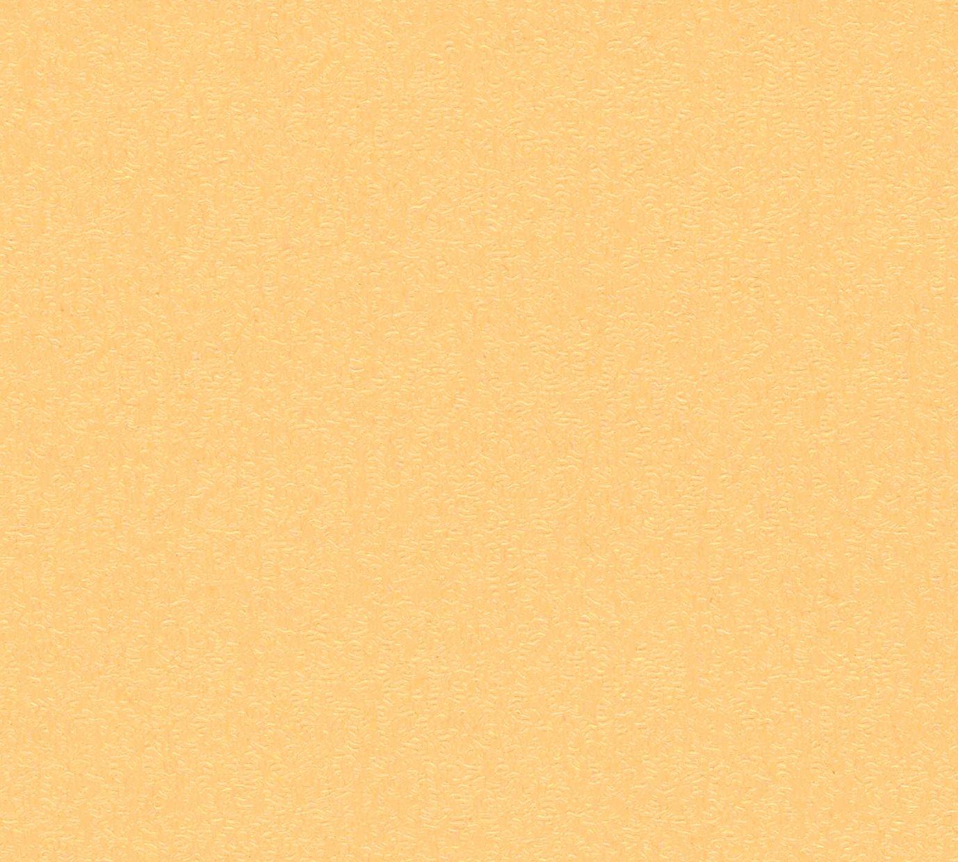 紙見本|スター印小間紙
